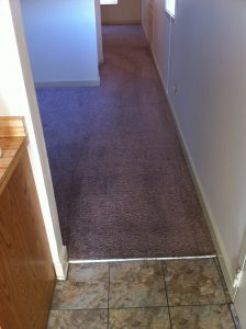 Carpet Cleaning 007