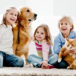 Expert Pet Stain and Odor Treatment by Quality Carpet Cleaning, Memphis, TN