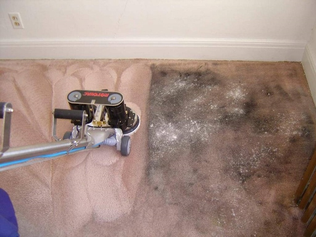Quality Carpet Care 1 Rated Memphis Carpet Cleaning