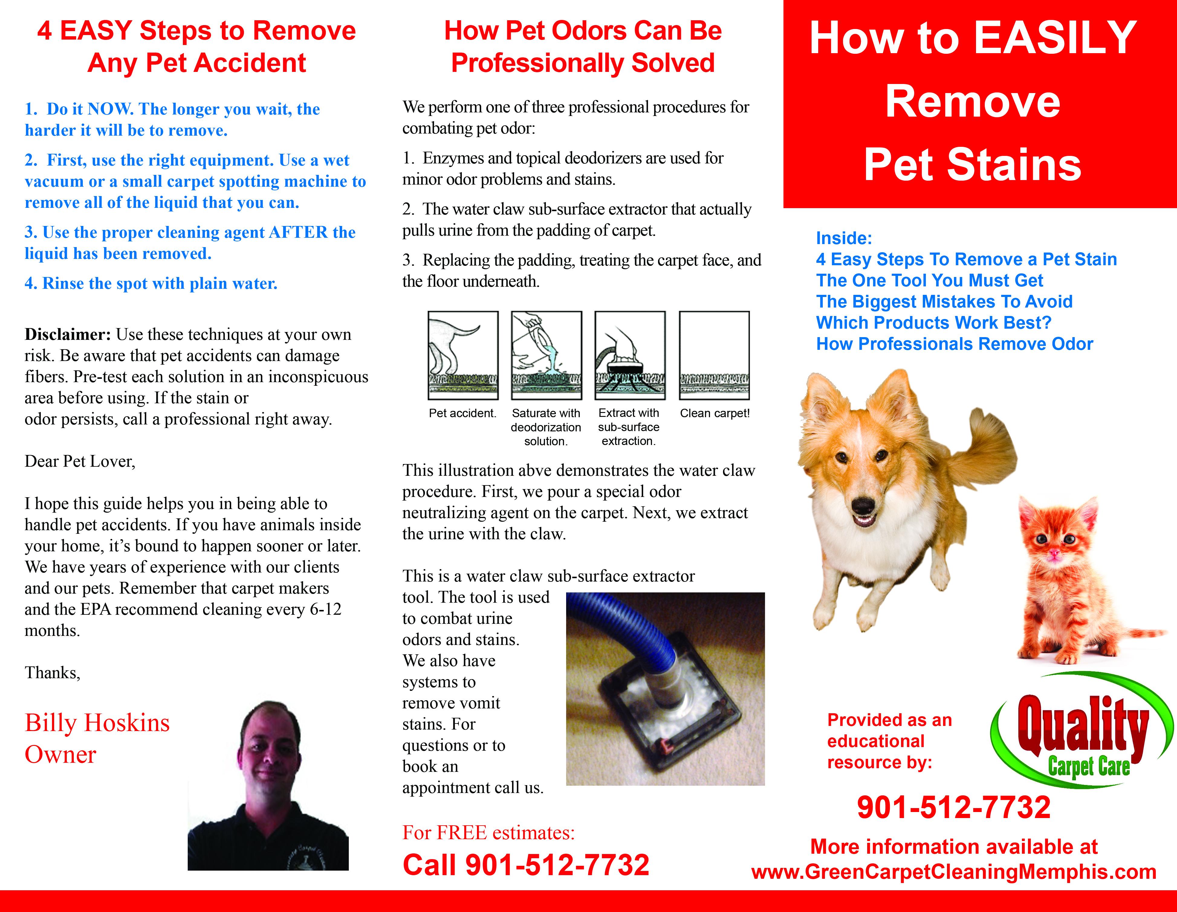 Remove Wet Dog Odor Carpet Carpet The Honoroak