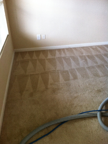 how to clean subfloor before carpet