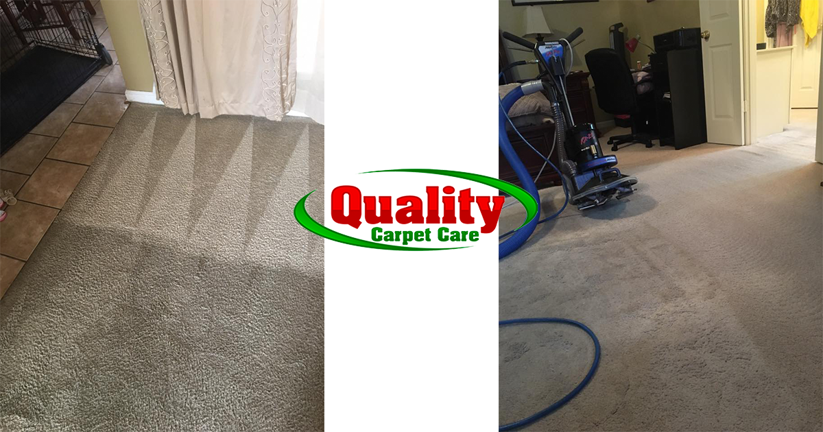 Carpet cleaning photo In Memphis TN